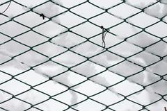 fence covered by snow - background - stock photo