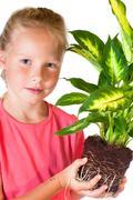 Girl with houseplant Stock Photos
