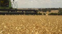 Header harvesting a crop of oats on an Australian farm Stock Footage