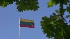 Lithuanian national flag in wind and oak leaves Stock Footage