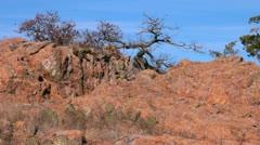 Elk Mountain View in Wichita Mountains Wildlife Refuge Stock Footage