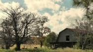 Barn and Horses Stock Footage