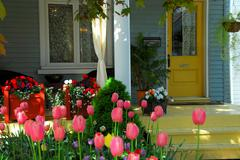 Stock Photo of house porch with flowers