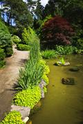 landscaped garden path and pond - stock photo