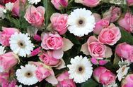Pink roses, white gerberas in bridal arrangement Stock Photos