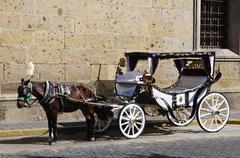 horse drawn carriage in guadalajara, jalisco, mexico - stock photo