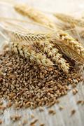 Stock Photo of whole grain wheat kernels closeup
