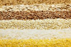 Stock Photo of various grains close up