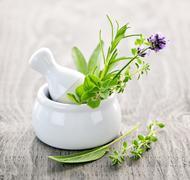Healing herbs in mortar and pestle Stock Photos