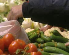 Selecting cucumbers - stock footage