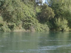 River banks of the Waikato River Stock Footage