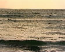 Surfers wating waves Stock Footage