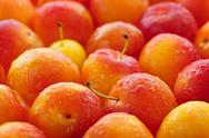 Stock Photo of plums background