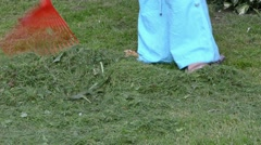 Woman blue pant rake fresh cut mow grass lawn red raker Stock Footage