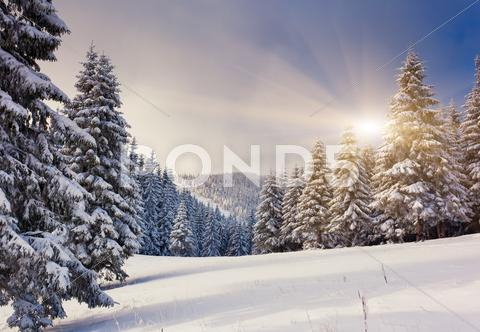 Stock photo of winter