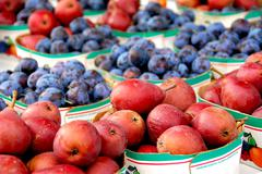 Stock Photo of fruits for sale
