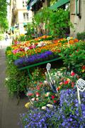 Stock Photo of flower stand in paris
