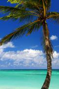 scenic view on caribbean sea - stock photo