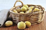 Stock Photo of row potatoes