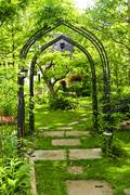 lush green garden - stock photo