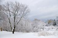 Stock Photo of winter landscape