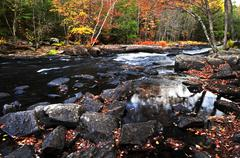 fall forest and river landscape - stock photo
