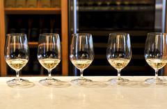 wine tasting glasses - stock photo