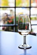wine tasting glass - stock photo