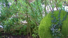 Windy Hedgerow with Old Mill Wheel - stock footage
