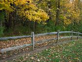 Wooden Fence In Autumn Stock Photos
