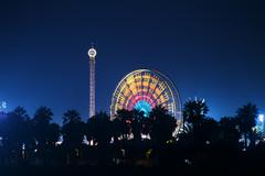 Ferris Wheel Carnival At Night Stock Photos