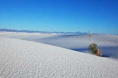 White desert Stock Photos