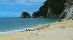 Mutton cove abel tasman np Stock Footage