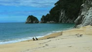 Stock Video Footage of mutton cove abel tasman np