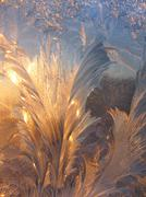 Ice pattern and sunlight on winter glass Stock Photos