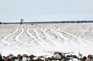 Snowy tracks in a field Stock Photos