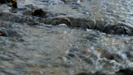 Stream flowing over wood in water Stock Footage