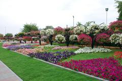 hanging gardens of al ain - stock photo