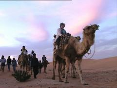 TUNISIA tourist caravan in the desert low angle shot - stock footage