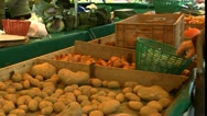 Busy Farmer's Market Stock Footage