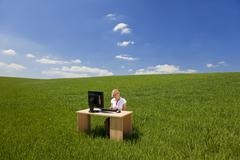 liikenainen tietokoneella green field toimisto - stock photo