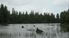 Lake View of Algonquin Park Stock Footage