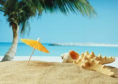 sandy beach on a tropical coast - stock photo