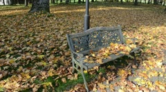 closeup decorative park bench autumn maple tree leaves move wind - stock footage