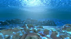 Barracudas 2 Stock Footage