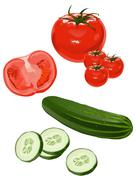 Tomato and cucumber Stock Illustration
