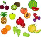 Stock Illustration of fruits