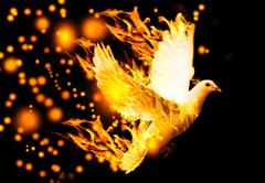 flying dove on fire - stock photo
