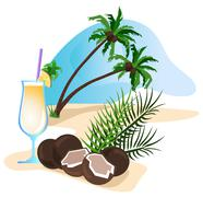 Cocktail and coconut Stock Illustration