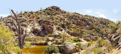 australian outback oasis - stock photo